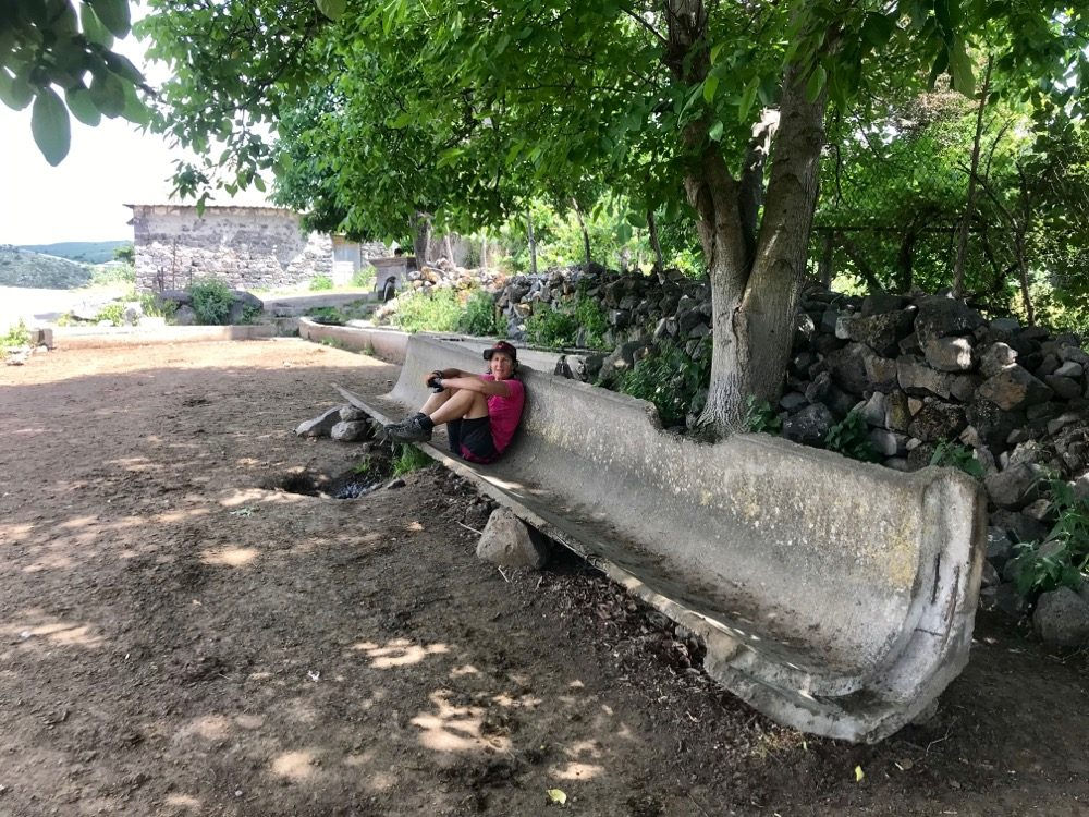 Resting in the half pipe under the shade of a walnut tree
